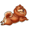 4565-a-stray-chow-chow