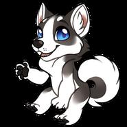 Chibi-canine-husky