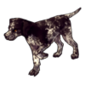 2241-brindled-english-pointer