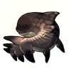 293-skeletal-orca