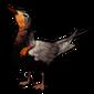 449-black-chirp