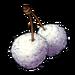 235-puffballs