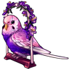 4218-lovely-lilac-budgie