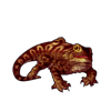 1139-striped-bearded-dragon