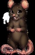 139-23-black-rat