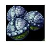 552-strange-celary-seed