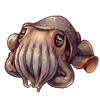 3140-seabed-cuttlefish