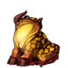 2905-spotted-bull-frog