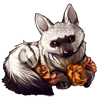 3230-orange-rose-aardwolf