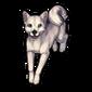 452-white-doge