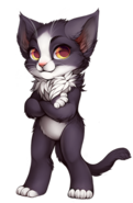Cat-tuxedo
