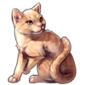2998-friendly-ginger-tabby