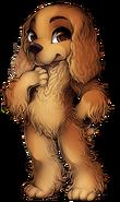 Canine spaniel