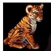 627-tiger-cub