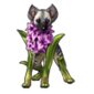 4779-chilling-hyenacinth