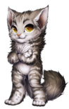 Cat-maine-coon