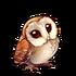 4150-barn-owl-battle-buddy