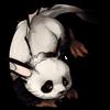 311-panda-sharkitty