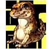 880-leopard-gecko-plush