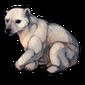 444-polar-burr