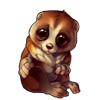 1151-brown-slow-loris