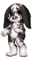 128-6-spotted-lop