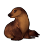 473-summer-seal