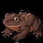 5766-peanut-chocolate-frog