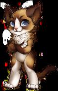 Cat-snowshoe