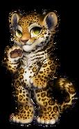 41-10-jaguar