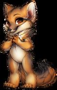 Fox culpeo