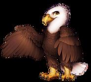 20-9-bald-eagle