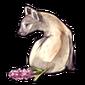 4777-imperial-hyenacinth