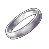 2014-silver-ring