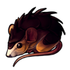 717-spiked-spiny-mouse
