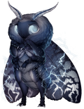Stormy moth2