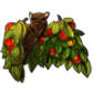1826-apple-fruit-tree-bat