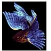 Blue Flishy