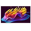Rainbow-nudibranch