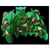 1828-dragon-fruit-fruit-tree-bat