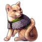 3000-squire-ginger-tabby