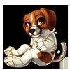 1606-jack-russel-canine-plush