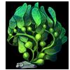 487-pea-algae