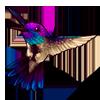 610-blue-throated-hummingbird