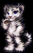 51-10-white-tiger