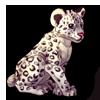 626-snow-leopard-cub