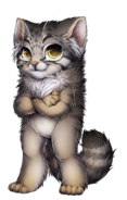Cat-pallas