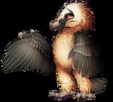 21-9-bearded-vulture