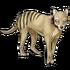 4092-sydney-the-thylacine