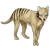 4092-sydney-the-thylacine